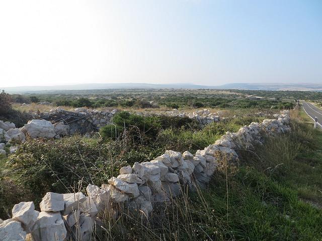 Suhozidi